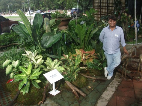 Philippine Orchid Society show 114