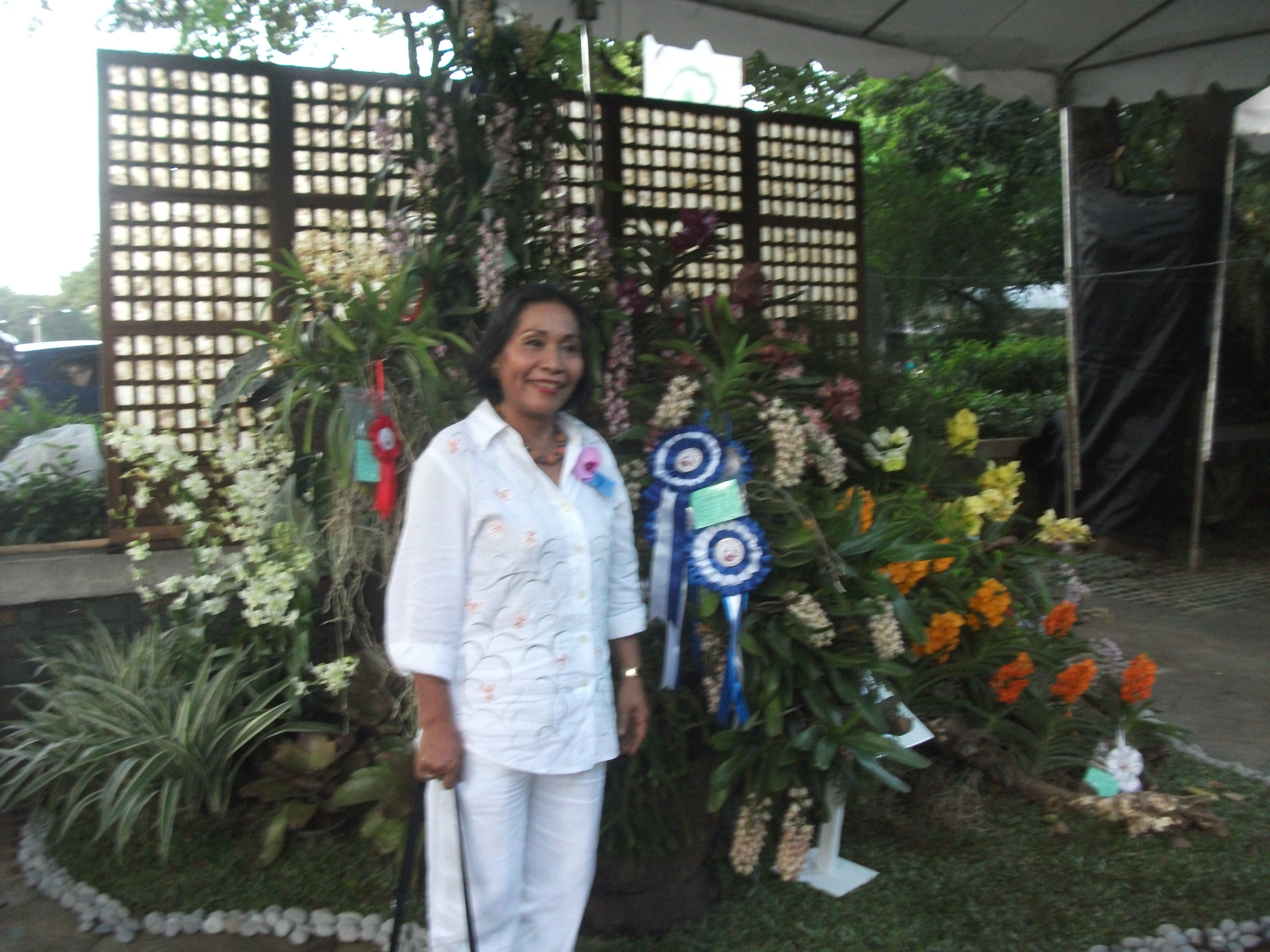 Philippine Orchid Society show 172.jpg