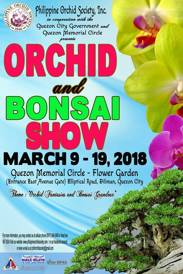 72 annual orchid show.jpg