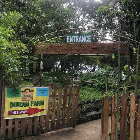 Duran Farm2.jpg