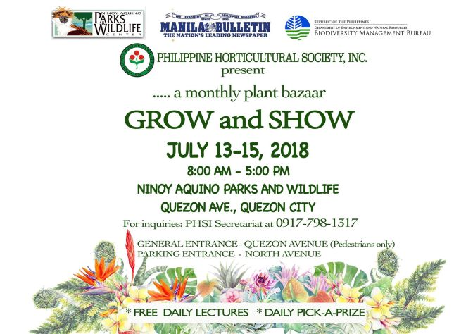Grow and More Plant Bazaar