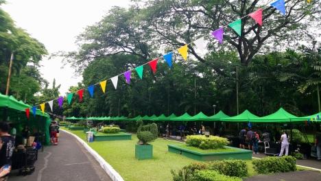 show and grow plant bazaar.JPG