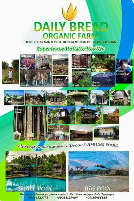 daily-bread-organic-farm