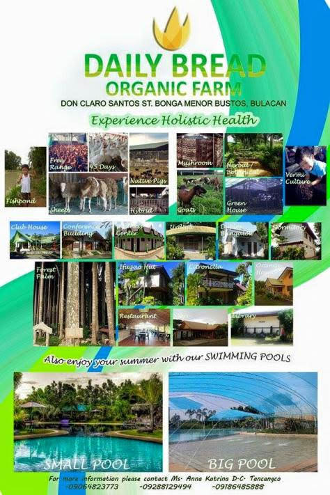 daily-bread-organic-farm