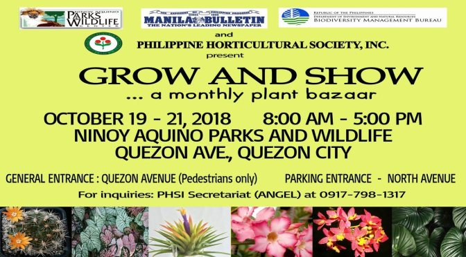 Grow and Show Monthly Bazaar from October 19 to 21, 2018