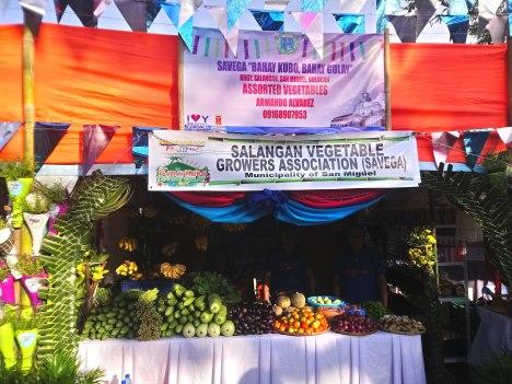 salangan-vegetable-growers