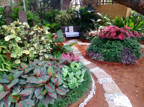 los-bau00f1os-horticultural-society