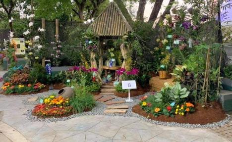malvarosa-orchid-booth