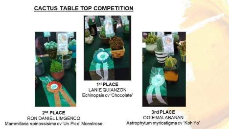 table-top-competition-winners1