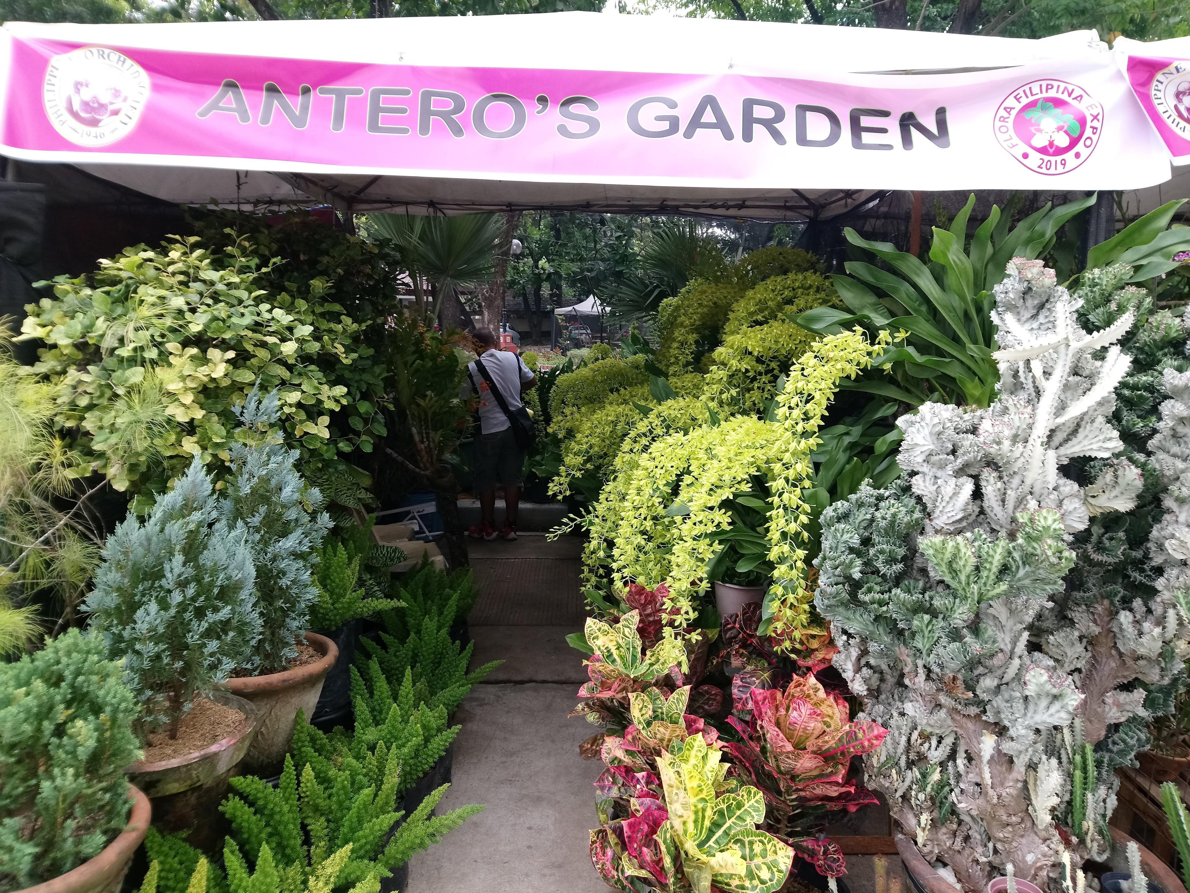 anteros-garden