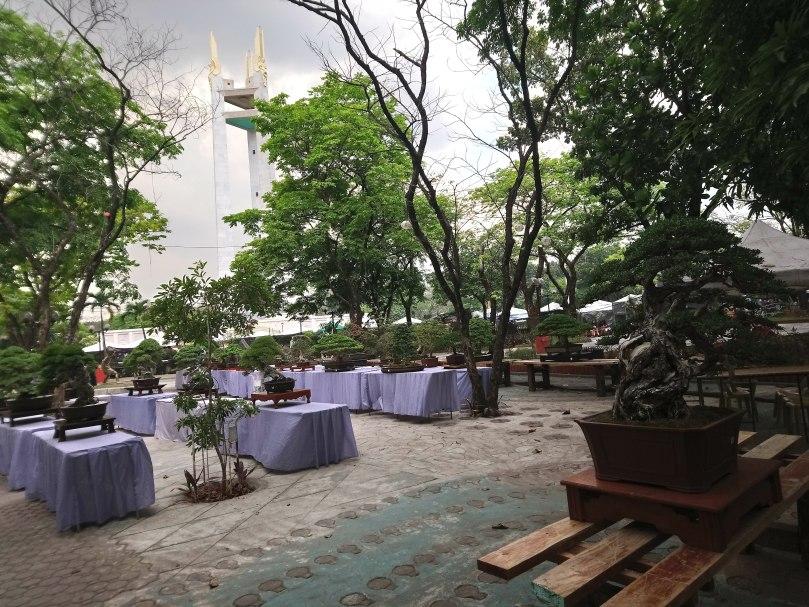 bonsai-exhibit-2-flora-filipina-