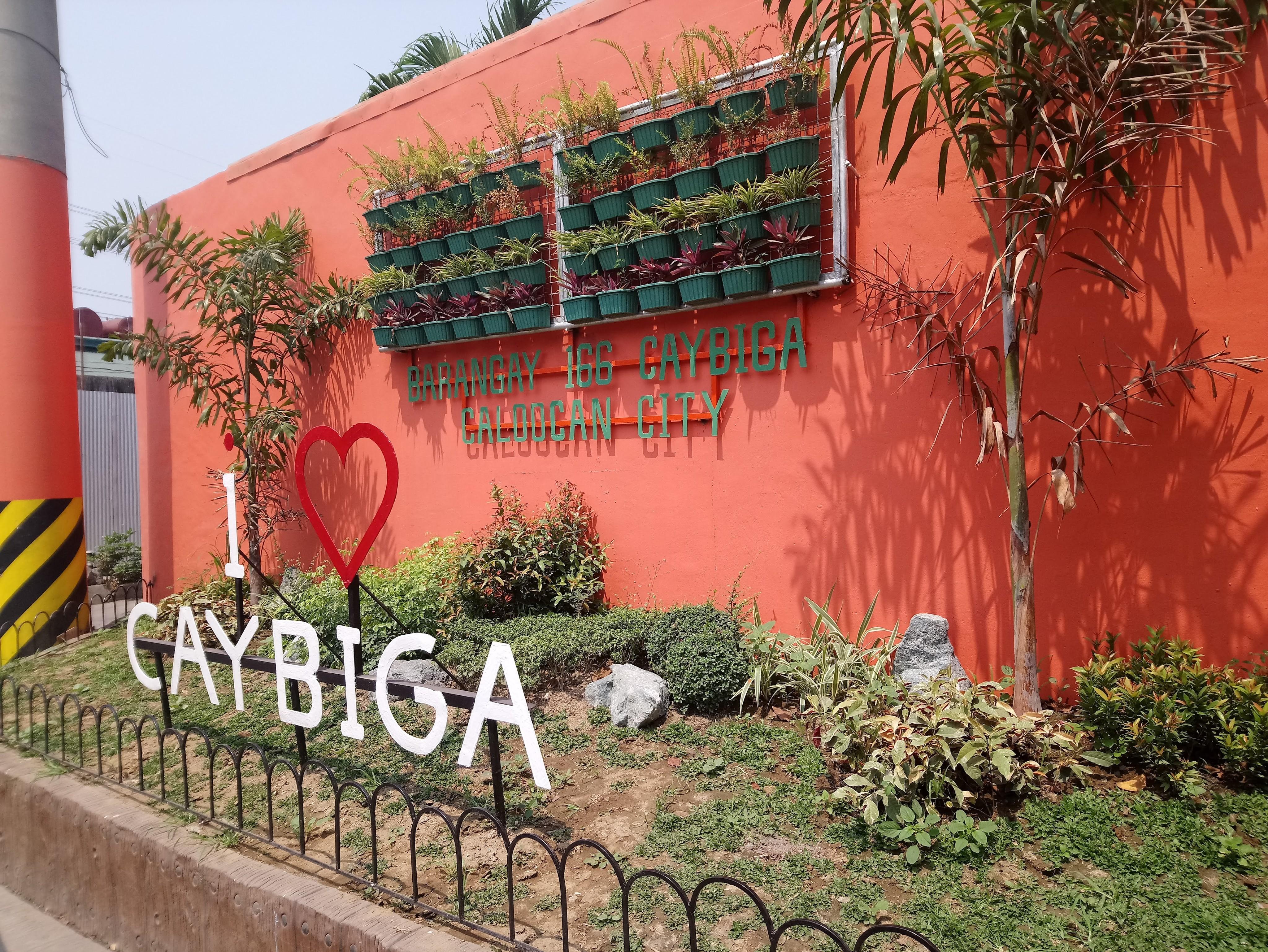 caybiga