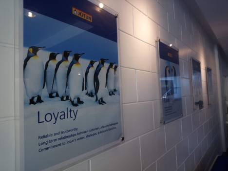 jotun-penguin