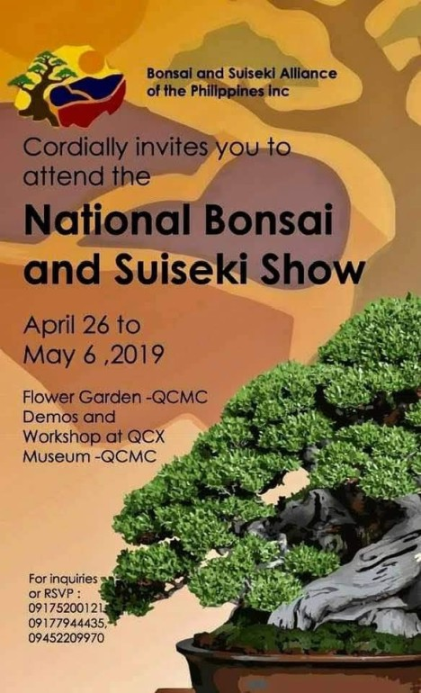 national-bonsai-and-suiseki-show