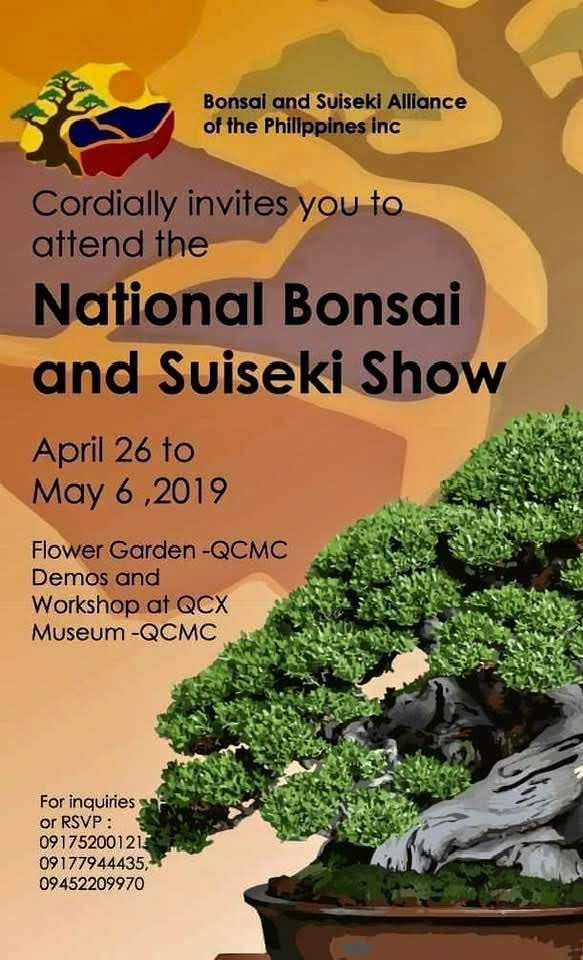 national-bonsai-and-suiseki-show
