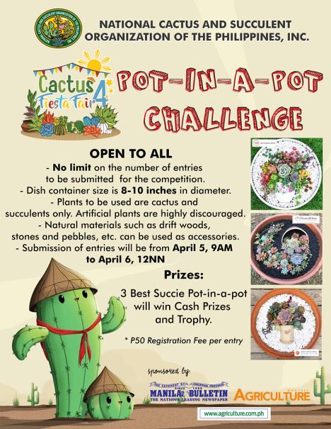 pot-in-a-pot-challenge